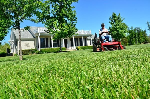 you mow your lawn prime insurance agency in lakewood new jersey