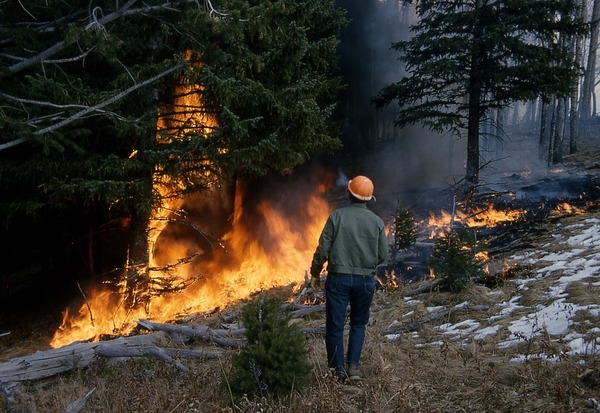 Wildfire Damages What Your Insurance Covers Prime